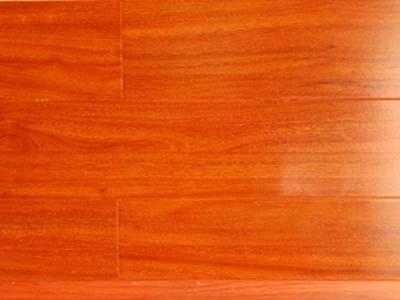 Sàn gỗ 12mm Worldfloor 003