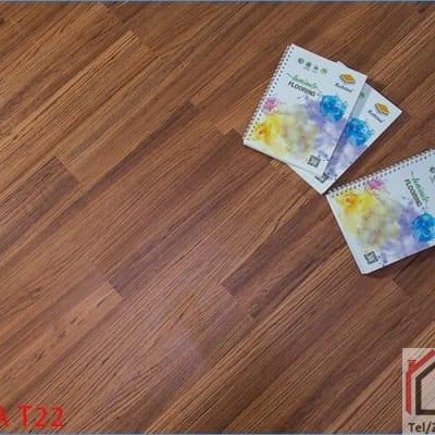 Sàn gỗ Robina 12mm T22